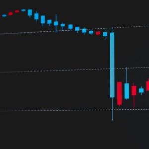 株式投資の勉強(マインドアップ・スキルップ本)