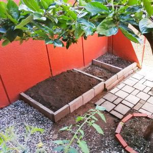 庭の東側拡張を完成させた