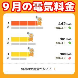 9月の電気料金