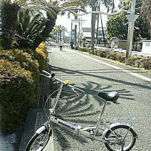 わが自転車も健康診断