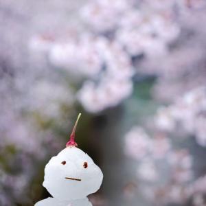 雪鉄と行きたいところでしたが・・自粛ぅ!