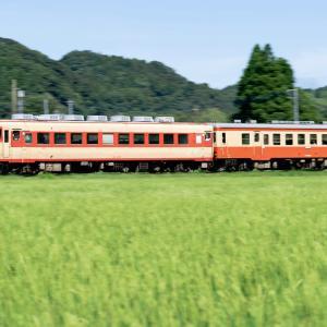 盛夏のいすみ鉄道を撮る!2