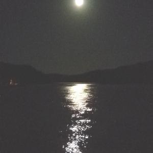 *中秋の名月「月の道」*