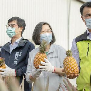 パイン禁輸、台湾が「爆買い」で中国に対抗、 注文が殺到
