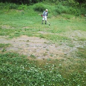 ラリーの最中でも草刈り