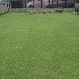 2020年芝刈り32回目@9mm、施肥、殺菌、殺虫