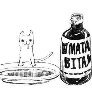 猫にまたたび