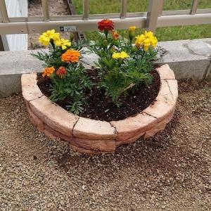 今年のGWは家庭菜園作り
