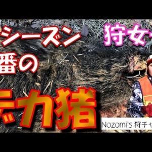 【Nozomi's狩りチャンネル】ひと狩り行こうぜ!美人女性猟師Youtuberをご紹介!
