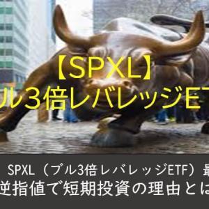 【米国株】SPXL最適投資方法!逆指値で短期投資の理由とは?