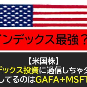 【米国株】インデックス投資に過信禁物!GAFAと【MSFT】以外が成長ストップ!
