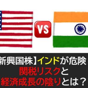 【新興国株】インドが危険!関税リスクと経済成長の陰りとは?