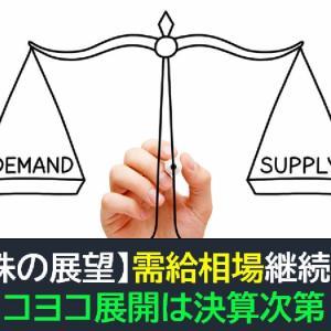 【米国株の展望】需給相場継続か!?ヨコヨコ展開は決算次第!