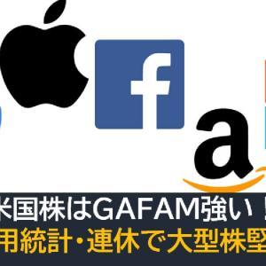 米国株はGAFAM強い!大型株に資金が集まる!