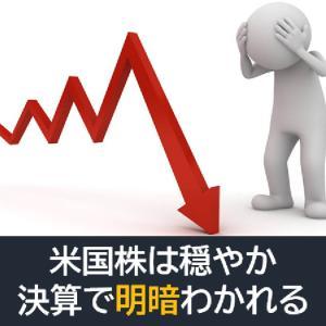 米国株は穏やか!決算で明暗分かれる