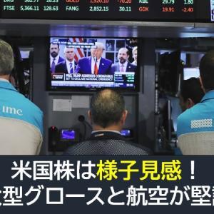 米国株は様子見!大型グロースと航空が堅調