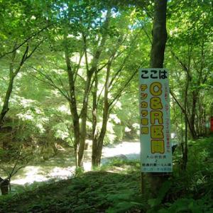日本初 テンカラ専用区で最高の釣りができた