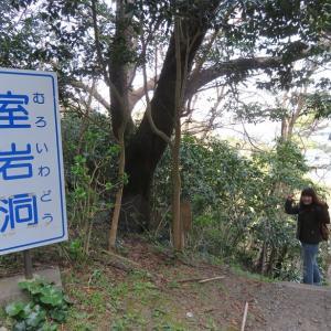 ぐるり伊豆の旅 誰も居ない室岩洞を散策