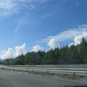 県跨ぎの移動解除で早速伊豆へ犬と母と旅行です