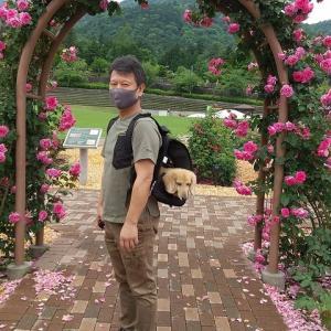 山梨の旅 富士川クラフトパークを散策