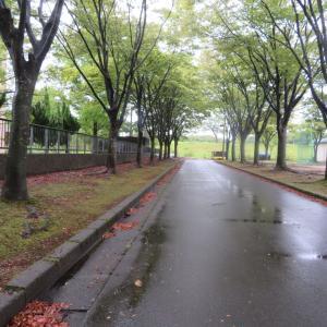 雨・雨・雨🌂
