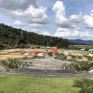 秋のお花見2020(越後丘陵公園)