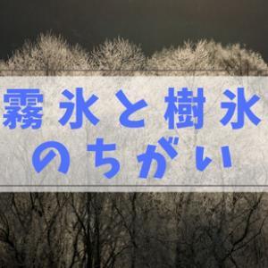【冬山の芸術】霧氷と樹氷の違い?エビの尻尾?「登山者への答え」