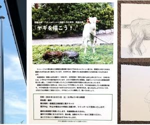 「ヤギを描こう!」ヤギの「ばす」くんとリニューアルした板橋区立美術館
