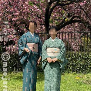 ウチの義妹とお友だち、八重桜とチューリップのお花見部活。