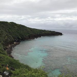 ハワイ旅行記 4日目 4 DISELショップ、黒い革ジャン、後悔先に立たず、、の巻