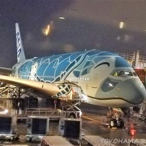 ANA A380 フライングホヌ搭乗記(前編) ~プレミアムエコノミー