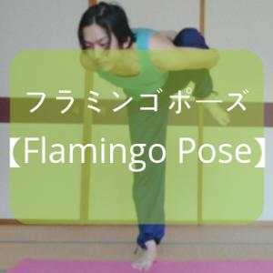 【ヨガ】「フラミンゴのポーズ」とは!?そのやり方をレポート