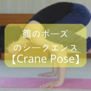 【ヨガ】「鶴のポーズ」のシークエンスに初チャレンジ!上手くできるポイントを紹介!