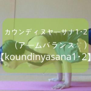 【ヨガ】「カウンディヌヤーサナ1・2(アームバランス)」のやり方