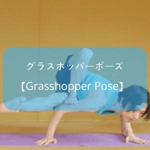 【ヨガ】アームバランス系の「グラスホッパーポーズ」にチャレンジ!そのやり方は?