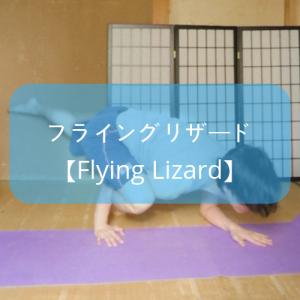 【ヨガ】アームバランス「フライングリザード」のやり方