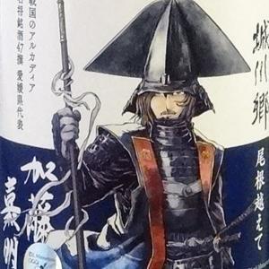 〔戦国のアルカディア〕愛媛県代表は賤ヶ岳の七本槍・七将の1人