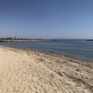 姫路福泊海浜公園(マリンベルト)の海岸を歩いてみた!キャンプ場はどうなった!?