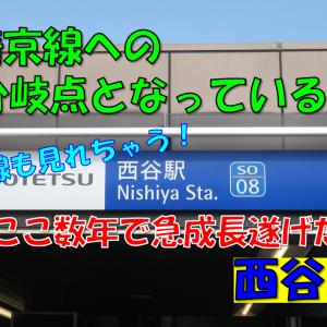 《駅探訪》【相鉄】JR直通開業から1年半!ホームドアも設置されたジャンクション駅西谷