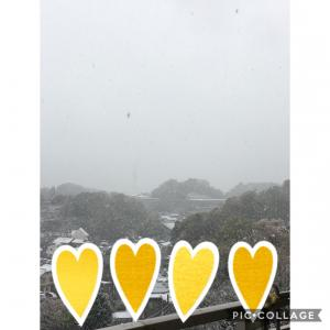 アタマジラミと雪