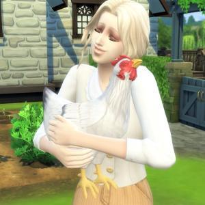 3.養鶏がしたい!ニワトリを飼います@Cottage Living