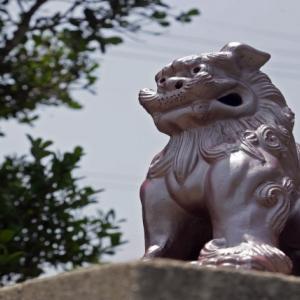ラグビー田村優が沖縄で訪れたスポットはどこ?【アナザースカイ】