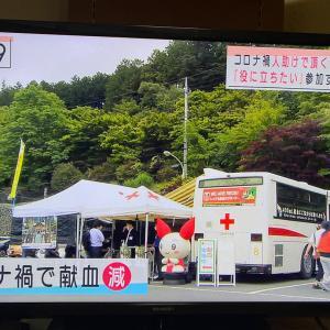 オオカミぬいぐるみ発送と三峯神社の献血活動。