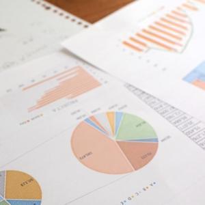 【ブログ運営報告】10ヶ月目で獲得したPV、アクセス、収入は?