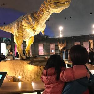 娘4歳2か月。恐竜博物館と雛人形と長良公園