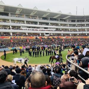 野生の里崎22万頭が疾走する有馬記念