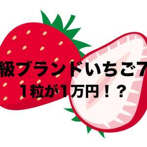 高級ブランドいちご7選をお取り寄せ【2020年】|1粒で1万円?おすすめ