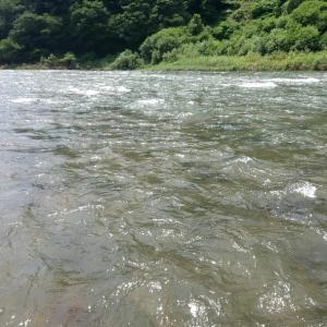 米代川釣行