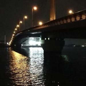 【釣り】南港へち釣行 (11/21 南港ヘチ釣り  キビレチヌ 40cm、ハゼ 釣果有り)