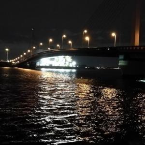 【釣り】南港へち釣行 (12/05 南港ヘチ釣り  キビレチヌ 43.5cm、ハゼ 釣果有り)